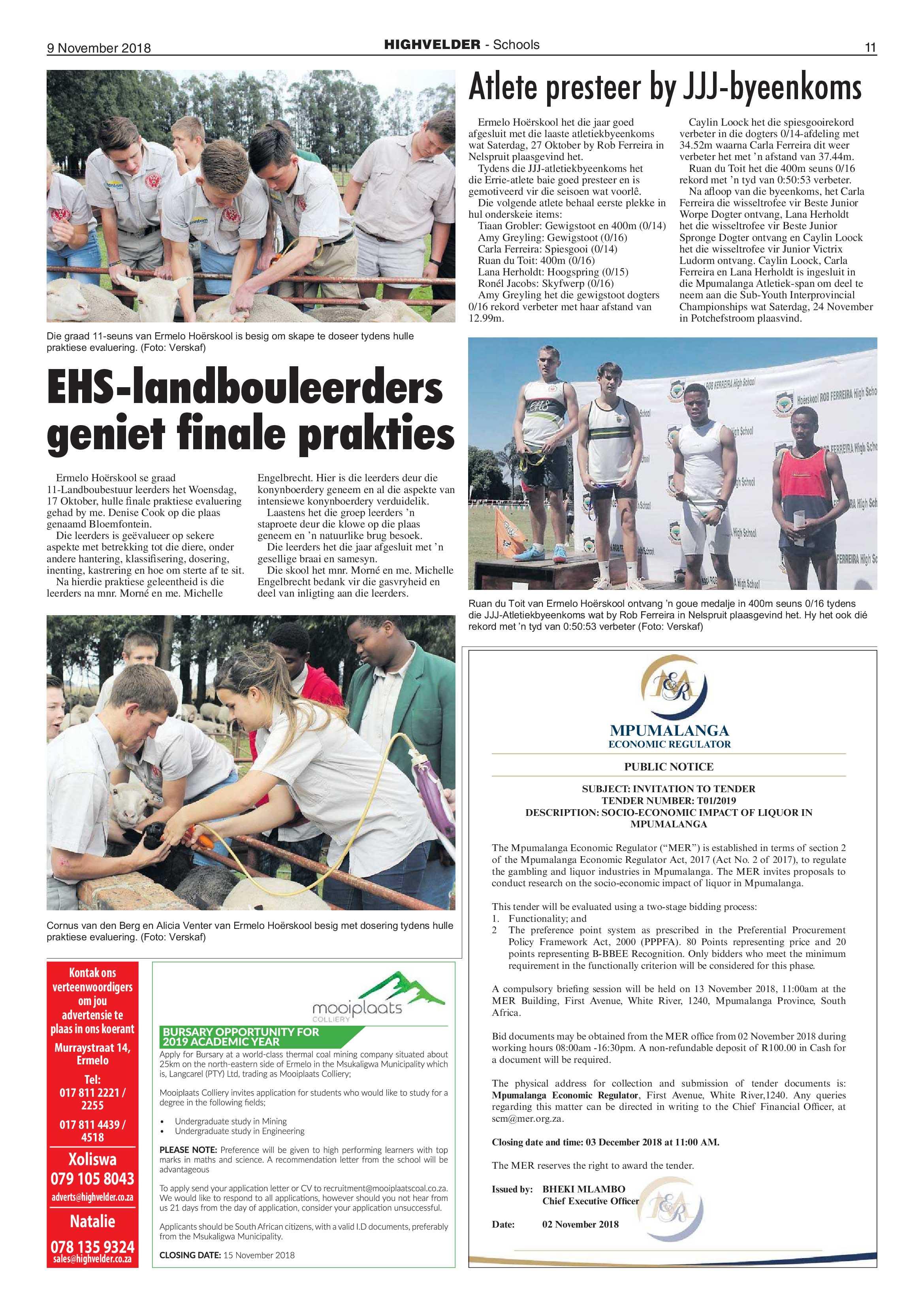 highvelder-09-november-2018-epapers-page-11